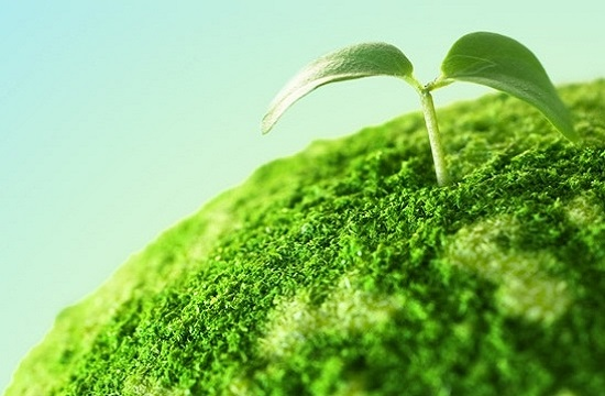 la sostenibilità stamperia levati